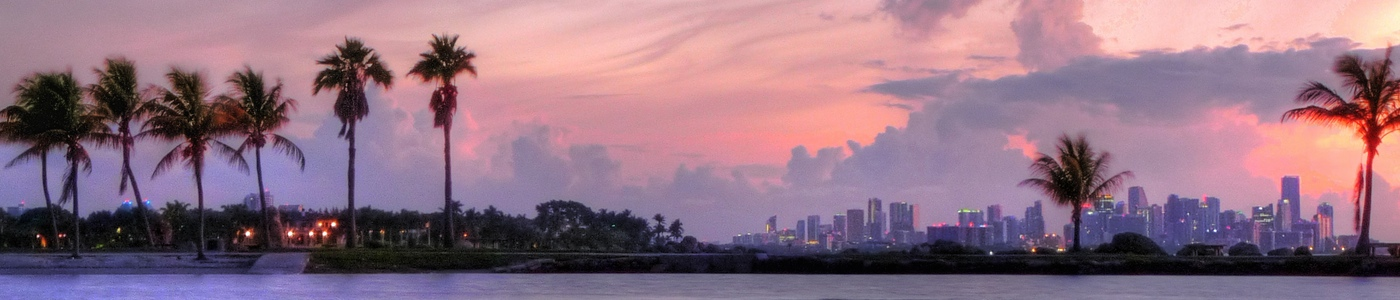 Discover the best in Miami