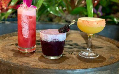 Where to celebrate National Margarita Day 2020 in Miami