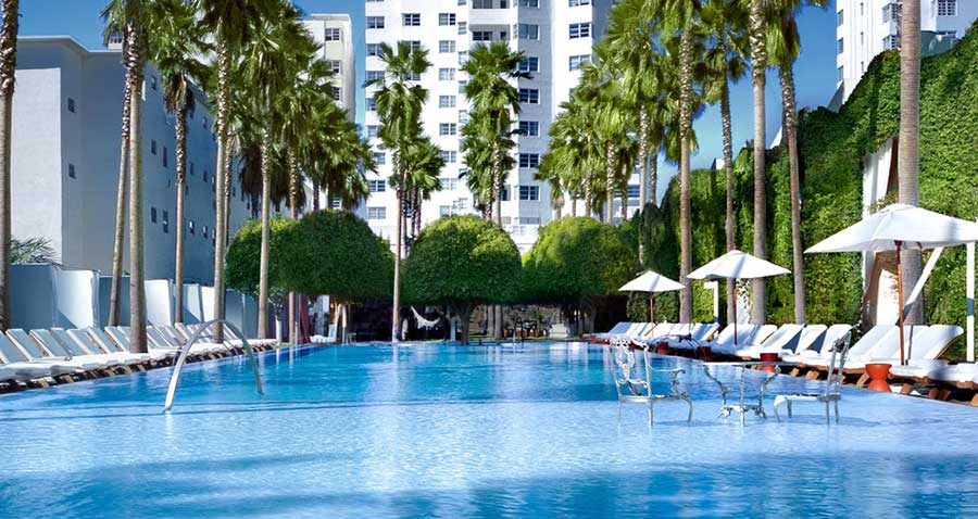 Delano miami for Pet friendly hotels in miami fl