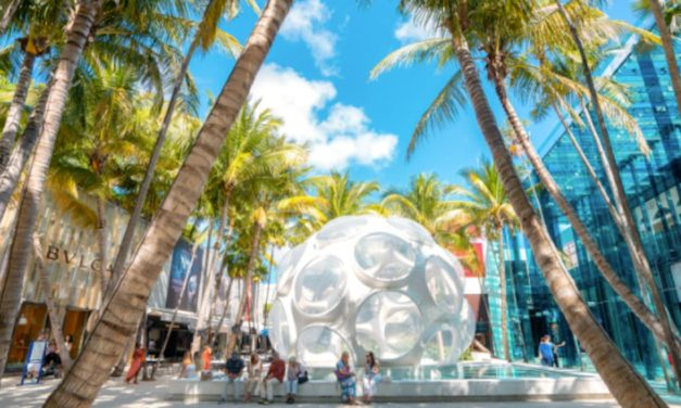 24 Hours in the Miami Design District