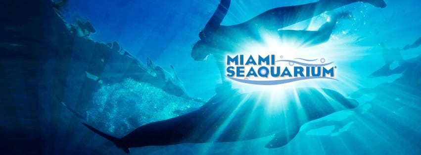 Miami Seaquarium, Museum of Discovery and Science and Zoo Miami to offer Summer Savings Pass